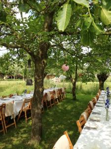 bruiloft-lange-tafels-catering-buiten-12